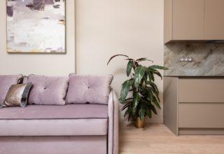Mieszkanie zakupione za gotówkę z gdańskiego skupu mieszkań. Na zdjęciu widać kanapę, szafę, obraz oraz roślinę w doniczce.